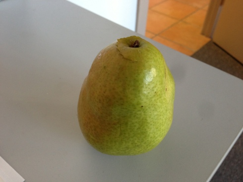 It's not nice to eat your new best friend, but hopefully Mr. Pear understood