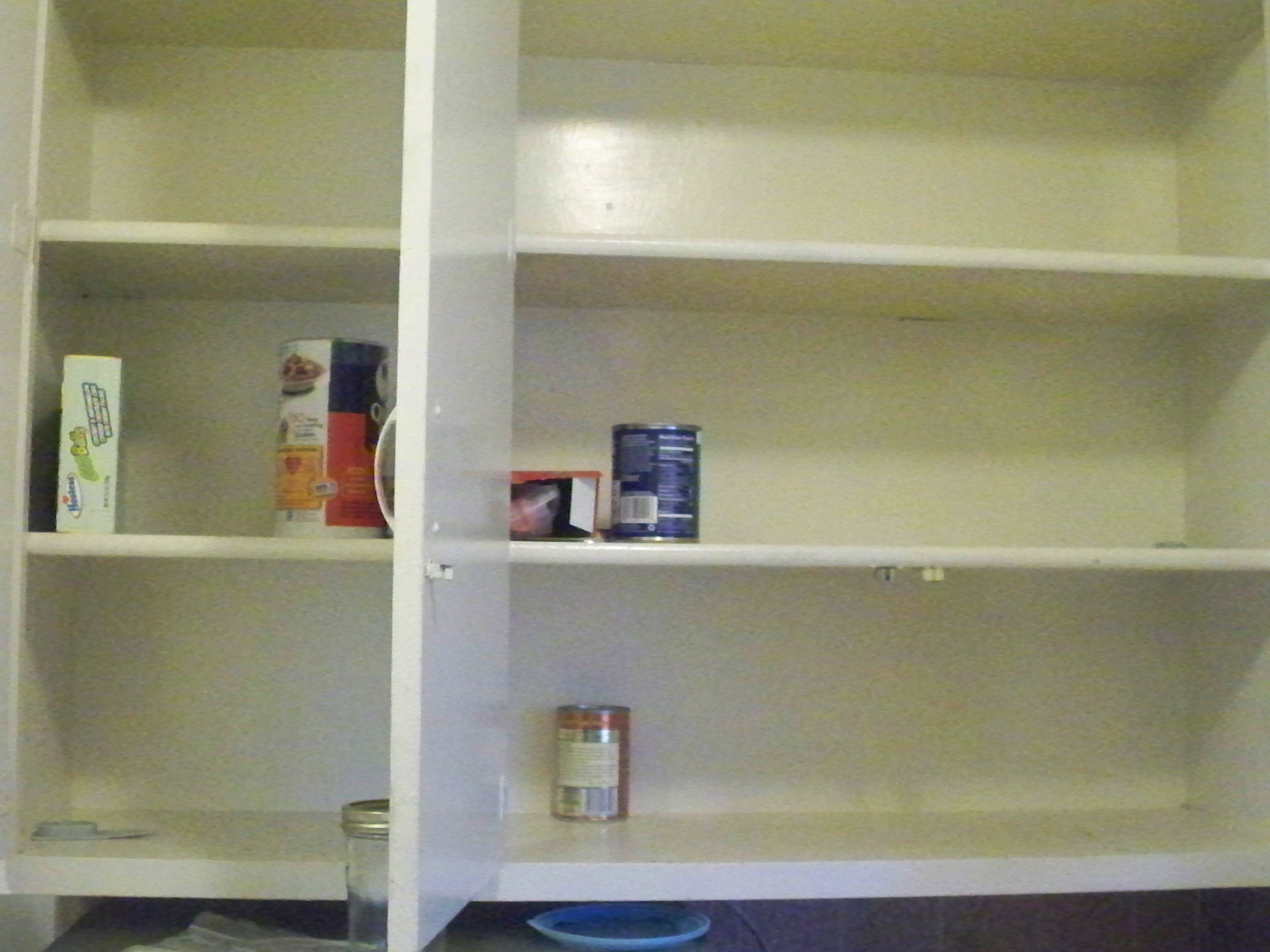 Cupboard's Bare, Time's Up | Foodbank CEO lives for a month on food stamps